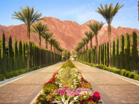 Counting Down Best of Buddies-Trip Destinations. No. 7: Palm Springs