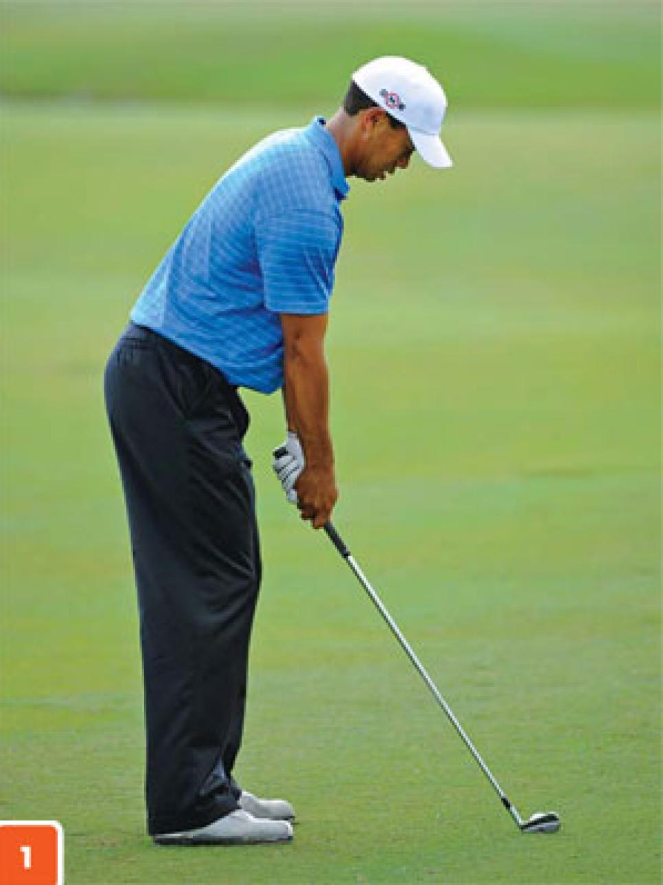 instruction-2010-10-inar01_tiger_woods.jpg