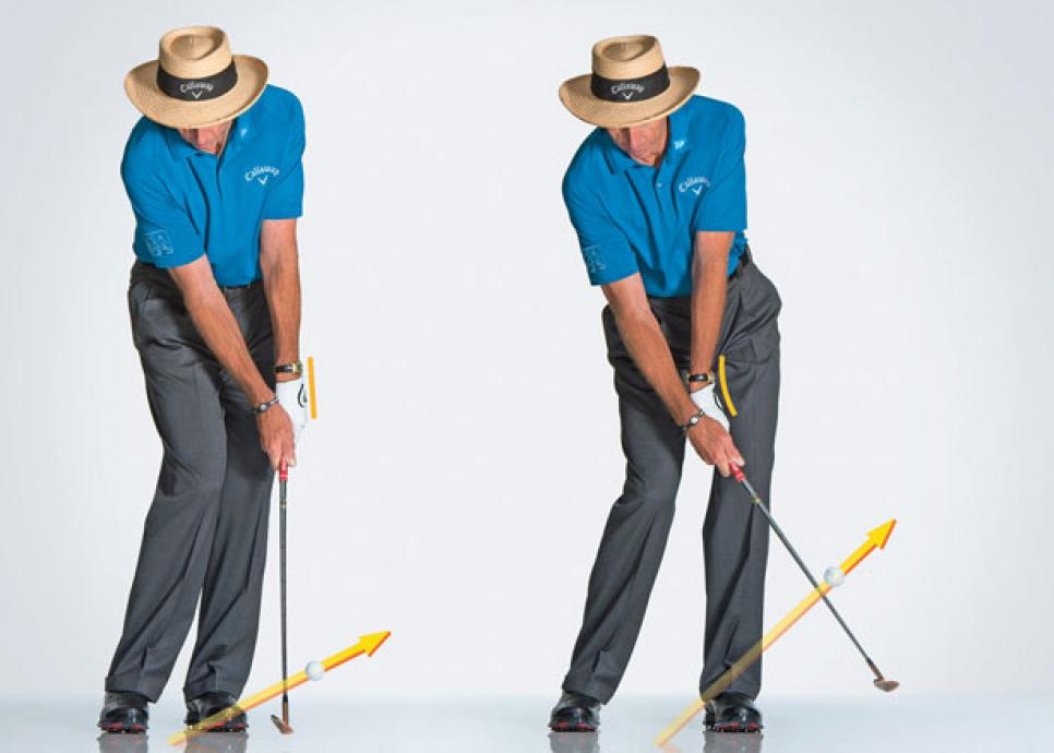 instruction-2012-08-inar01_david_leadbetter_low_chip.jpg