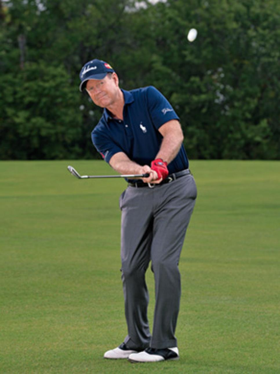 instruction-2015-02-inar01-tom-watson-half-wedges-300.jpg