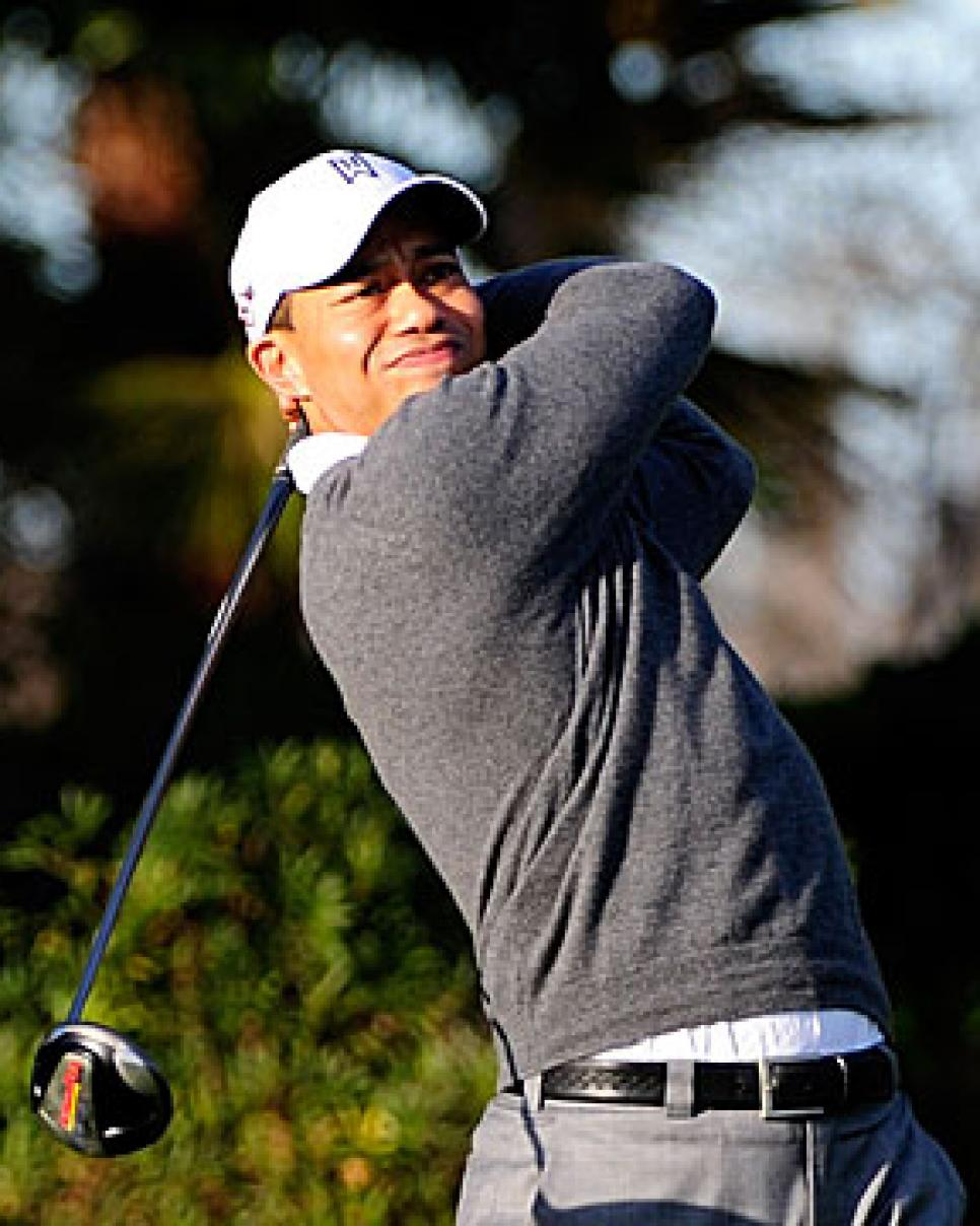 golfworld-2010-03-gwar01_0321_tiger_300.jpg
