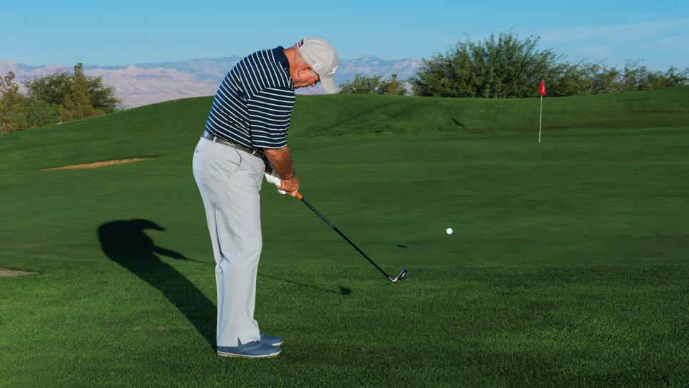 Essential-Shots-Butch-Harmon-Chipping.jpg