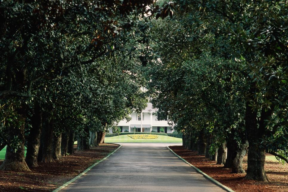 Augusta National magnolia lane.jpg