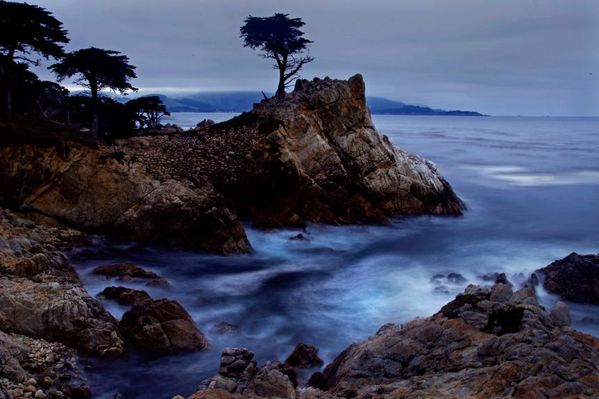 Lone Cypress, between Cypress Point Golf Course and the Pebble Beach Golf Links