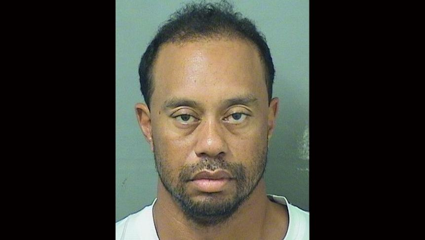 Tiger-Woods-mug-shot.jpg