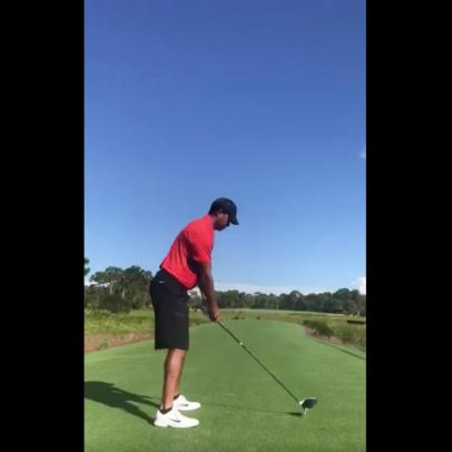Hank Haney views video, says Tiger Woods' swing one 'he could win with'