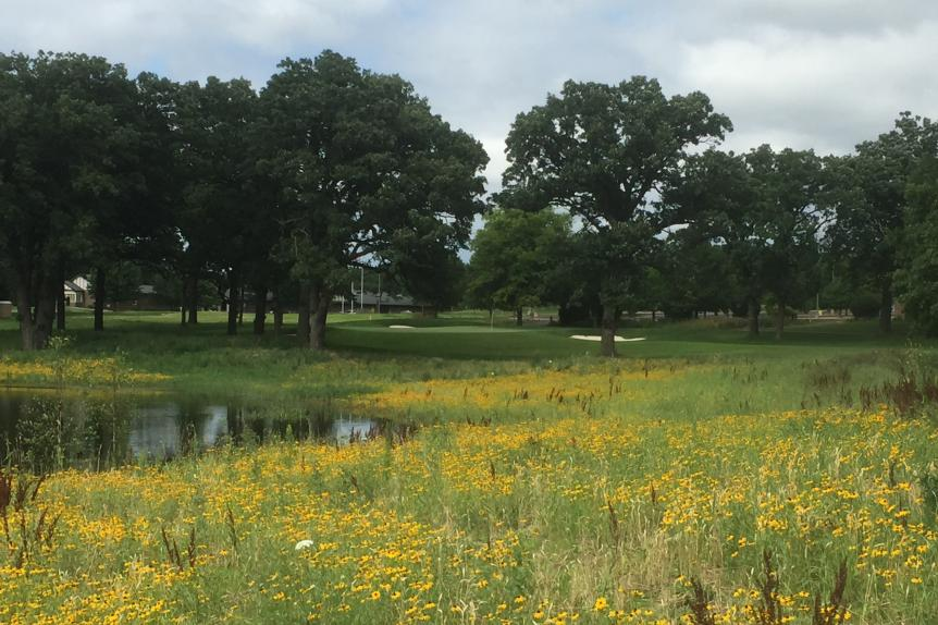 The-Preserve-at-Oak-Meadows-18th-hole-Ron-Whitten.jpg