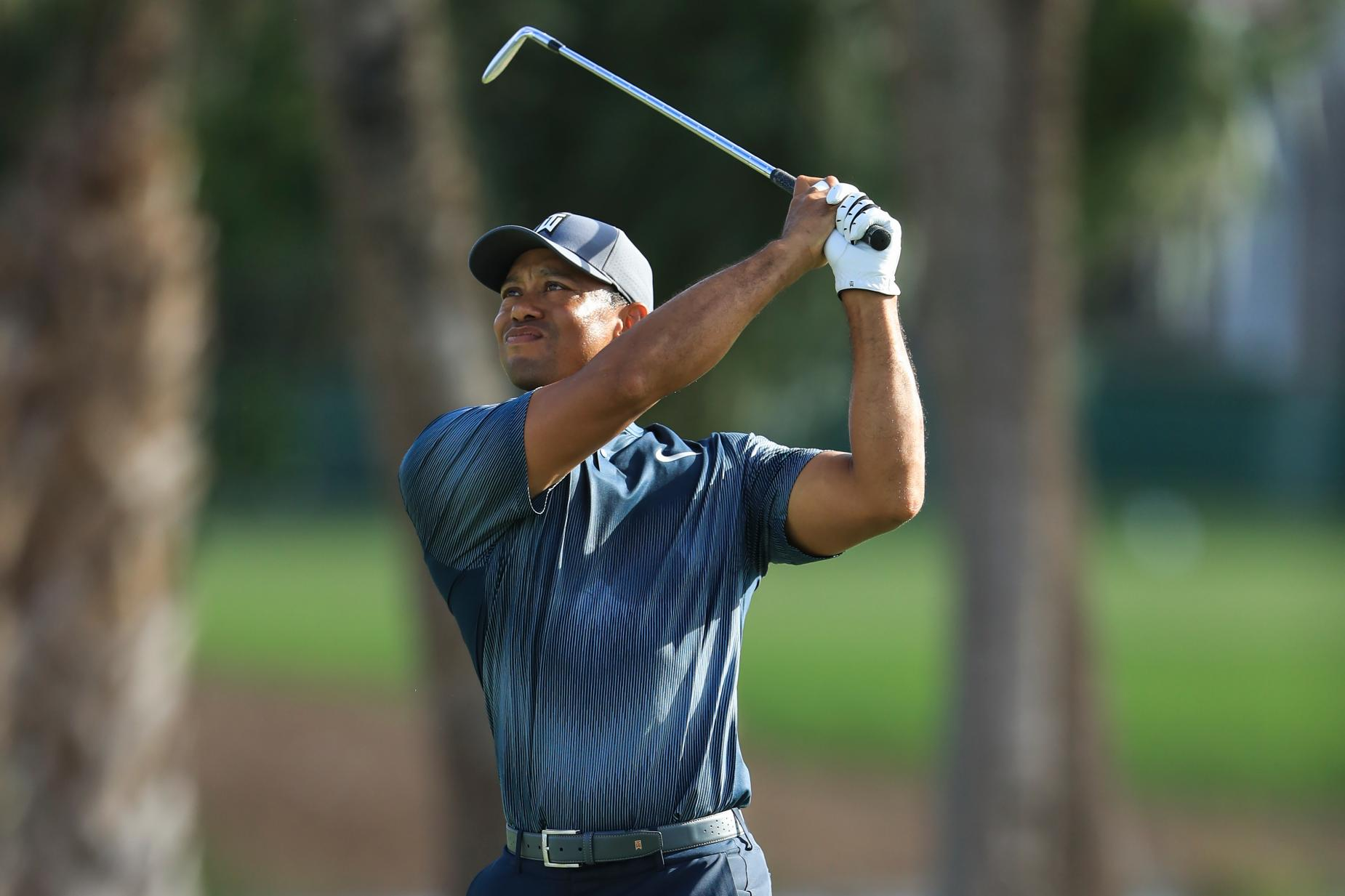 180221-tiger-woods-swing.jpg