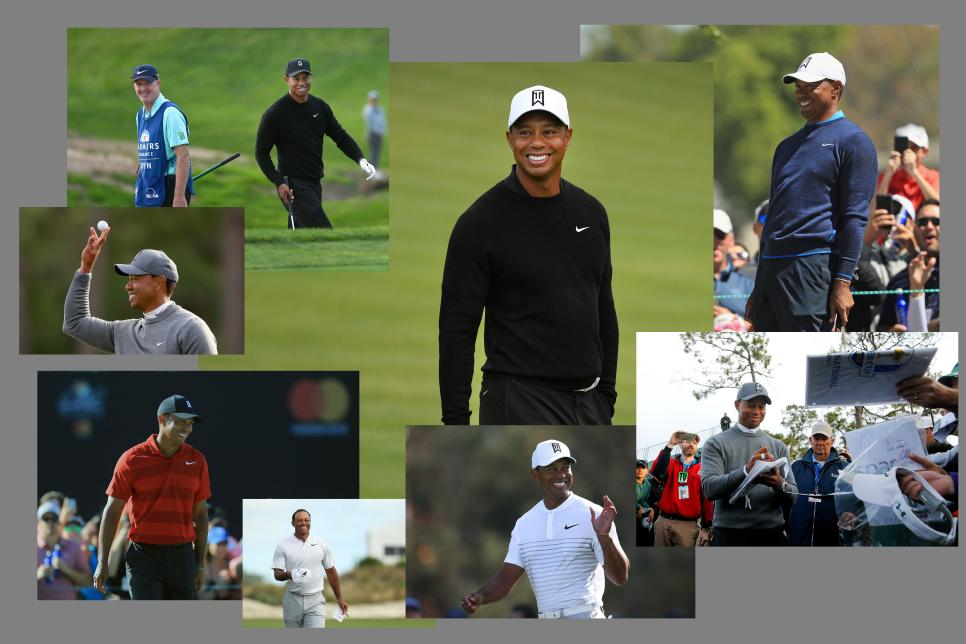 tiger-smiling-collage-2018.jpg