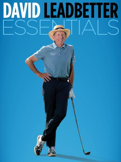 The David Leadbetter Essentials