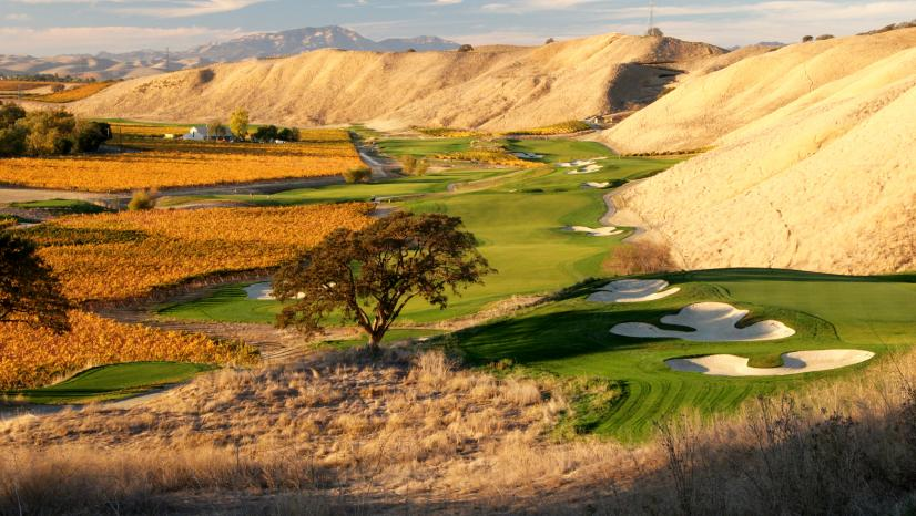 The-Course-at-Wente-Vineyards.jpg