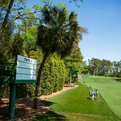 Masters 2019: Augusta National magic revealed again in a solitary palm tree