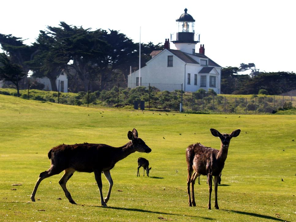 Pacific Grove, Calif. Points Of Interest