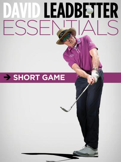 The David Leadbetter Essentials: Short Game