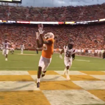 This close up video of a Tennessee wide receiver's touchdown grab will give you a concussion