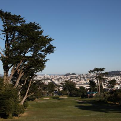 TPC Harding Park's Older Brother